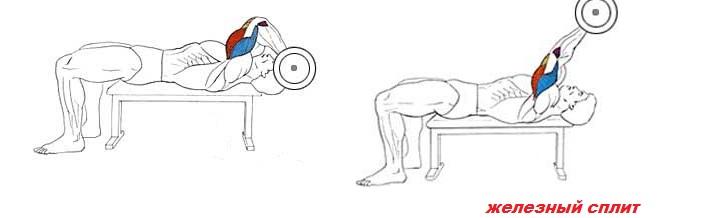 Французский жим лежа это упражнение для тренировки трицепса фото