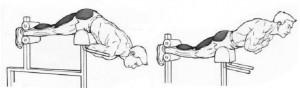 Атлет выполняет упражнение для мышц спины гиперэкстензию рисунок.