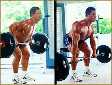 Тяга штанги для тренировки спины