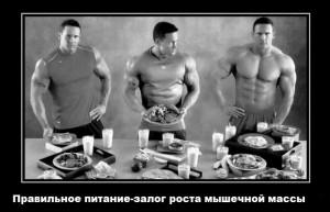 Еда для бодибилдеров фото.