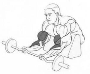 Выполнение упражнения на бицепс на скамье Скотта рисунок.