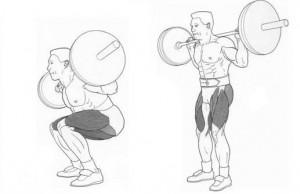 Упражнения для мышц ног-приседания со штангой