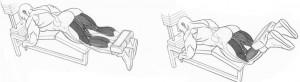 Сгибания ног в тренажере рисунок
