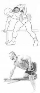 Выполнение упражнения с гантелями для спины тяга гантели к поясу рисунок.