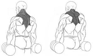 Техника выполнения упражнения для спины шраги рисунок.