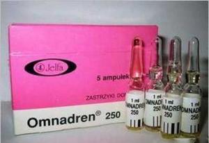 Омнадрен-250 анаболический стероид фото.